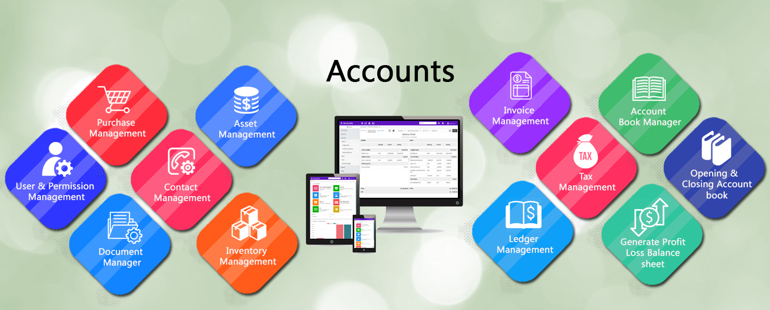 Bizsuite Accounts