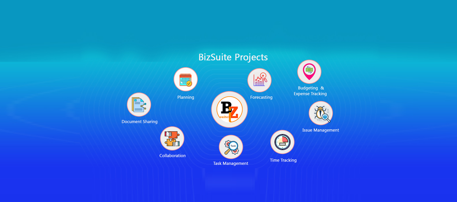 Bizsuite Projects