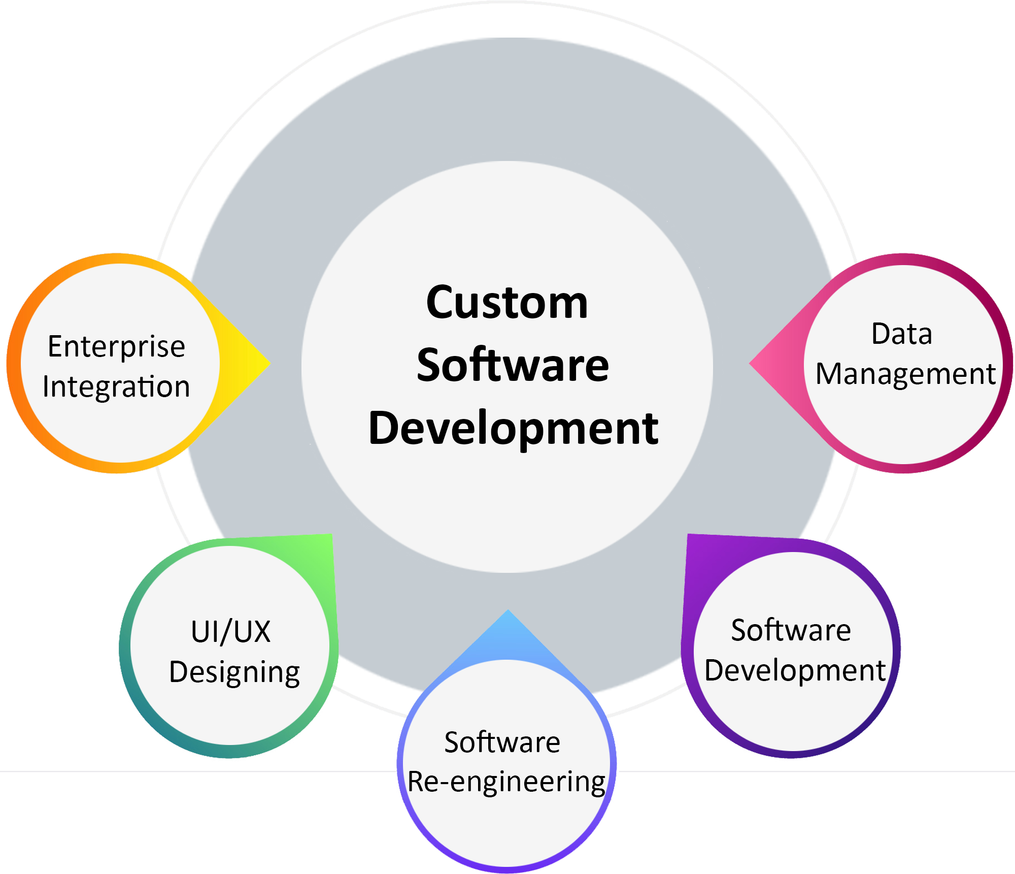 custom software infographic